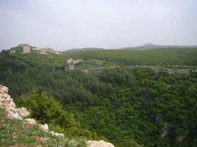 Syria シリア 2009 347.jpg